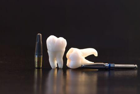Real Human Wisdom teeth and Dental Implants Stock Photo - 5532720