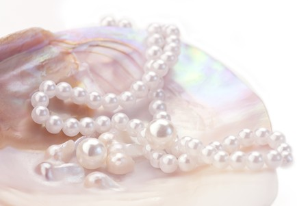oyster shell: Macro of pink pearls and necklace  in an oyster shell