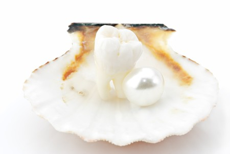 oyster shell: Healthy teeth concept. Real human wisdom tooth and natural pearls in an oyster shell