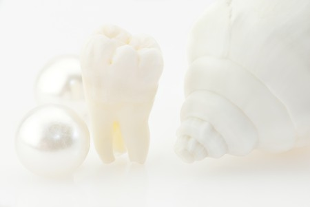 Healthy teeth concept. Real human wisdom tooth, natural pearls and shell photo