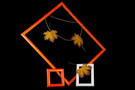 Autumn background. Orange and white photo frames with autumn maple leaves on rope over black photo