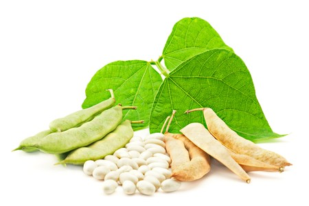 Fresh and dry kidney beans with leaves on white photo