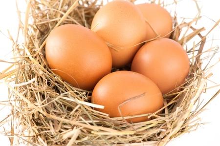 Macro shoot of brown eggs at hay. Shallow depth of field Stock Photo - 8668059