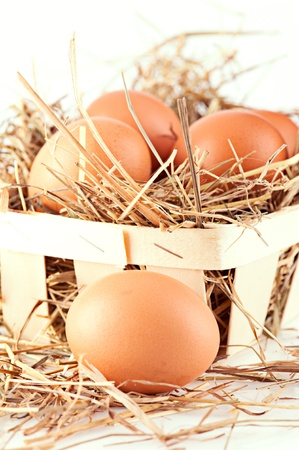 Macro shoot of brown eggs in wooden basket at hay. Shallow depth of field Stock Photo - 8668055