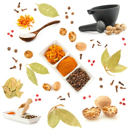 Spices big collection. Set of different spices on white background photo