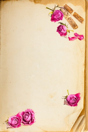 Old book page and vintage pink roses with space for your text photo