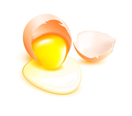Brown broken egg with flowing yolk on white background.