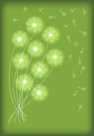 gift card with abstract dandelion flower Vector
