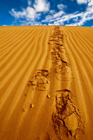 Lonely footprints on desert sand dune under blue sky photo