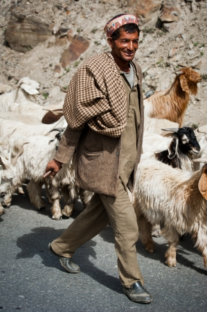 INDIA,  LAHOUL VALLEY - SEPTEMBER 5. Himalayan shepherd from Lahoul Valley leads his goat and sheep flock. India, Himachal Pradesh, Lahoul Valley September 5, 2012 Stock Photo - 16286421
