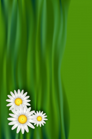 daisy vector: Chamomile  daisy  flowers over abstract green grass waves background  Pattern design for book cover, gift card or banner with copy space for text  Vector illustration eps10 with mesh  Illustration