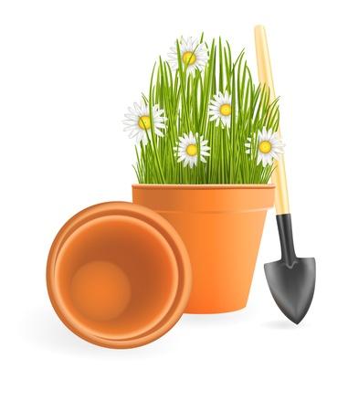 ollas de barro: Spring Gardening. Flores de manzanilla con la hierba verde en maceta y una pala pequeño jardín en el fondo blanco