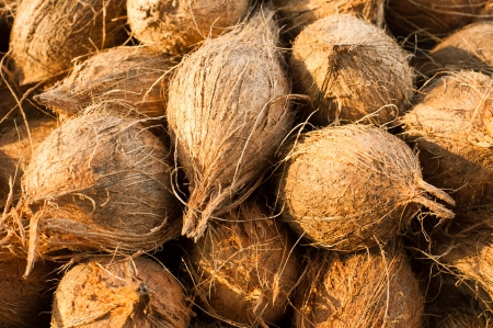 Tropical fruits natural background  Fresh coconuts at market place photo
