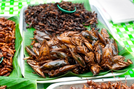 mealworm: Thai food at market. Fried insects grasshopper for snack Stock Photo
