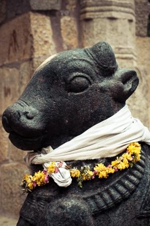 nandi: Statue of Nandi Bull at Gangaikonda Cholapuram Temple. In Hinduism Nandi is a Shiva vehicle. Great architecture of Hindu Temple dedicated to Shiva. South India, Tamil Nadu, Thanjavur (Trichy) Stock Photo