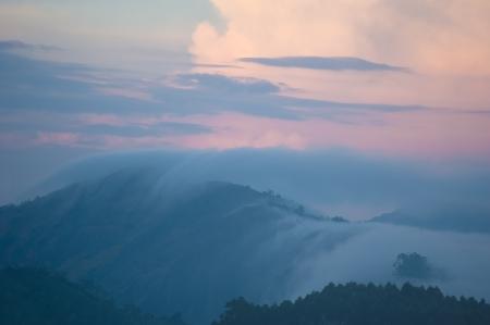 munnar: Early morning sunrise with fog at tea plantation. Munnar, Kerala, India. Nature background