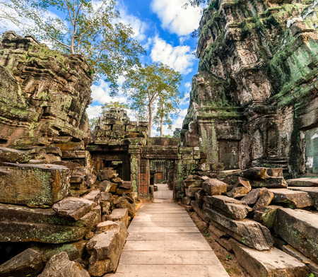 angkor wat: Ancient Khmer architecture  Ta Prohm temple with giant banyan tree at Angkor Wat complex, Siem Reap, Cambodia  Two images panorama