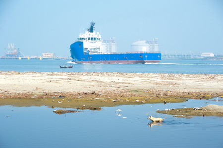 Abandoned dog at polluted water area and coastline near oil terminal cargo port. With cargo tanker and fishing boat. Kerala, India photo