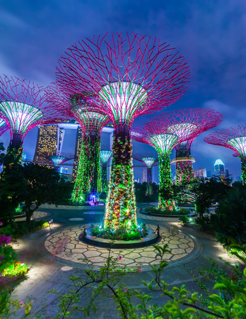 SINGAPORE -DEC 31: Futuristic view of amazing illumination at Garden by the Bay on Dec 31, 2013 in Singapore. Night light show at Supertree Groveis is main Marina Bay Sands district tourist attraction Редакционное