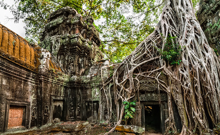 Ancient Khmer architecture. Ta Prohm temple with giant banyan tree at Angkor Wat complex, Siem Reap, Cambodia. Two images panorama Stock Photo - 28232629