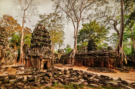 Ancient Khmer architecture. Panorama view of Ta Prohm temple with giant banyan trees at Angkor Wat complex, Siem Reap, Cambodia. Image in vintage style photo