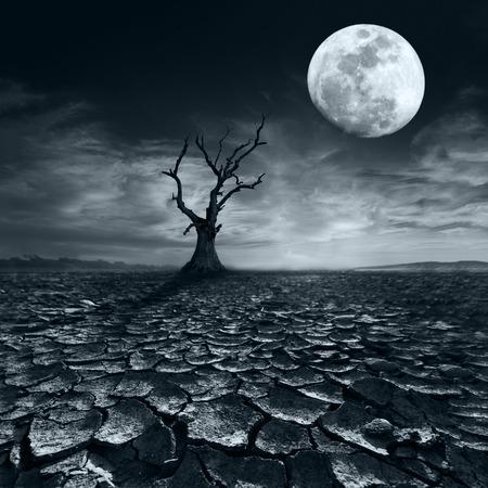 toter baum: Einsam toter Baum bei Vollmond Nacht unter dramatischen bewölkten Himmel bei Trockenheit rissig Wüstenlandschaft