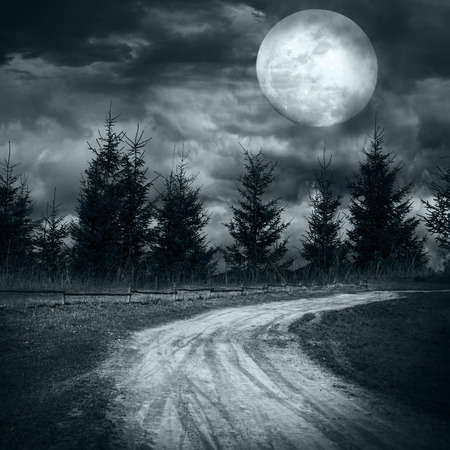 frighten: Magic landscape with empty rural road going to pine tree mysterious forest under dramatic cloudy sky at full moon night Stock Photo