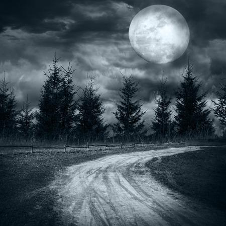 Paisaje mágico con el camino rural vacía va a pino árbol misterioso bosque bajo el cielo nublado dramático en la noche de luna llena