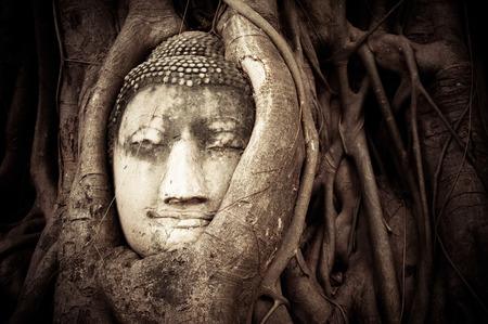 Buddha Head hidden in the tree roots. Ancient sandstone sculpture at Wat Mahathat. Ayutthaya, Thailand photo