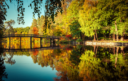 Sunny day in outdoor park with wooden bridge on lake and colorful autumn trees reflection under blue sky. Amazing bright colors of autumn nature landscape photo