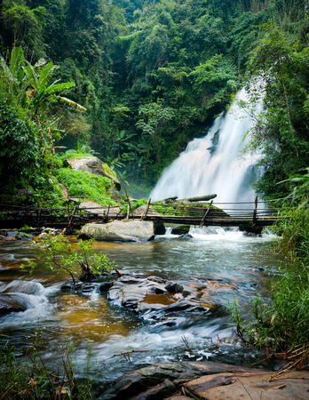 Tropical rain forest landscape with jungle plants, flowing water of Pha Dok Xu waterfall and bamboo bridge. Mae Klang Luang village, Doi Inthanon National park, Chiang Mai province, Thailand photo