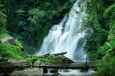 Tropical rain forest landscape with jungle plants, flowing water of Pha Dok Xu waterfall and bamboo bridge. Mae Klang Luang village, Doi Inthanon National park, Chiang Mai province, Thailand