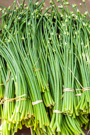 bulb and stem vegetables: Organic garlic sprouts for sale at outdoor asian marketplace. Food background