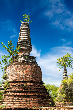 architecture ancient: Asian religious architecture. Ancient ruins with growing trees under blue sky. Ayutthaya, Thailand travel landscape and destinations Stock Photo