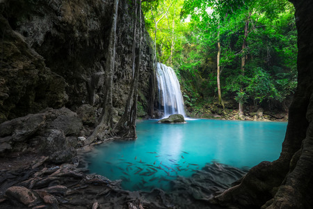 nature wallpaper: Jangle landscape with flowing turquoise water of Erawan cascade waterfall at deep tropical rain forest. National Park Kanchanaburi, Thailand