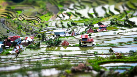 tilt: Amazing tilt shift effect view of rice terraces fields and village houses in Ifugao province mountains. Banaue, Philippines UNESCO heritage Stock Photo