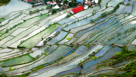 sky reflection: Village houses near rice terraces fields. Amazing abstract texture with sky colorful reflection in water. Ifugao province. Banaue, Philippines UNESCO heritage Stock Photo