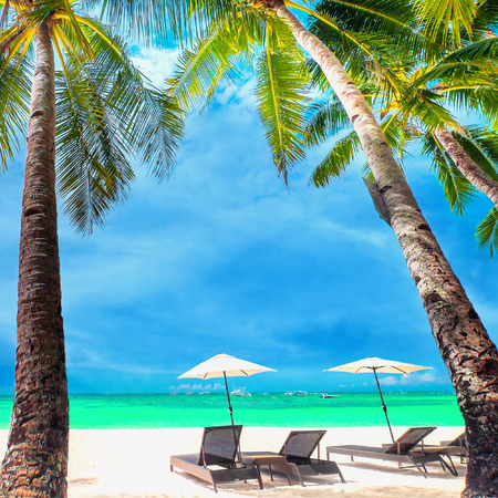 caribbean beach: Amazing tropical beach landscape with palm trees, umbrellas and chairs for relaxation on white sand. Boracay island, Philippines summer travel and vacation