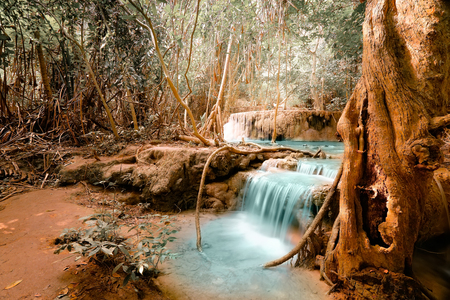 Fantasy jangle landscape with turquoise waterfall at deep tropical rain forest. Concept  for mysterious nature background Фото со стока