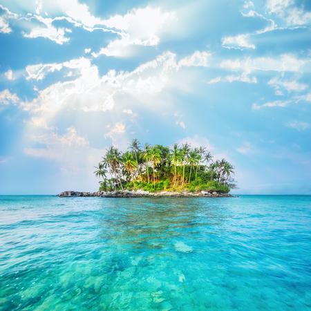 青い空の下で熱帯の島でヤシの木と海の風景です。タイ旅行風景や目的地
