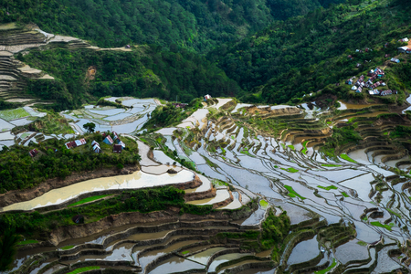 rural landscape: Village houses near rice terraces fields. Amazing abstract texture with sky colorful reflection in water. Ifugao province. Banaue, Philippines UNESCO heritage Stock Photo