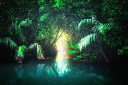 Fantasy jungle landschap van turkoois tropisch meer in mangrove regenwoud met tunnel en pad weg door weelderig. Sri Lanka natuur en reisbestemmingen