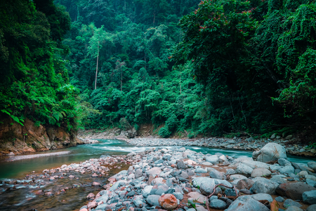 Fantasy landscape with river running among rocky banks covered with dense thicket Mysterious mountainous jungle with trees leaning over fast stream with rapids. North Sumatra, Indonesia. Stock Photo