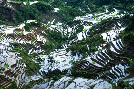 Amazing abstract texture of rice terraces fields with sky colorful reflection in water. Ifugao province. Banaue, Philippines UNESCO heritage Archivio Fotografico - 112524298