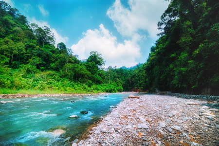 Fast mountain river with banks overgrown with wild rainforest. Fresh current with rocky bed running among dense jungle on sunny day. North Sumatra, Indonesia. Archivio Fotografico - 105273976