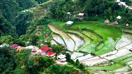 Village houses near rice terraces fields. Amazing abstract texture with sky colorful reflection in water. Ifugao province. Banaue, Philippines Archivio Fotografico - 117040151