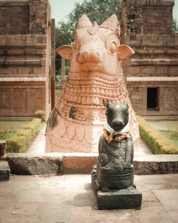 Statue of Nandi Bull in front of Gangaikonda Cholapuram Temple. In Hinduism Nandi is a Shiva vehicle. Great architecture of Hindu Temple dedicated to Shiva. South India, Tamil Nadu, Thanjavur (Trichy) 版權商用圖片
