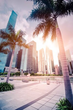 Urban landscape with palm trees. Abstract futuristic cityscape view with modern skyscrapers of Singapore. Skyline of business district 版權商用圖片
