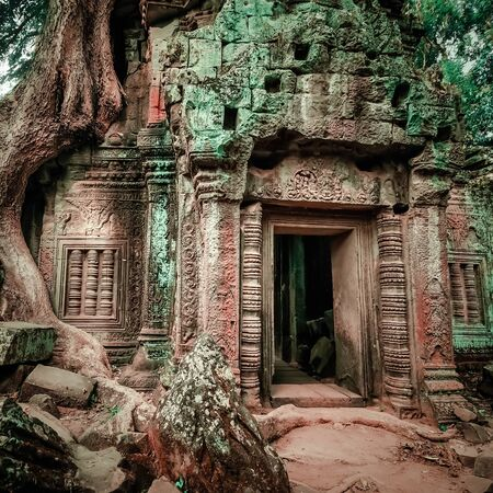 Ancient Khmer architecture. Ta Prohm temple with giant banyan tree at Angkor Wat complex, Siem Reap, Cambodia. Two images panorama
