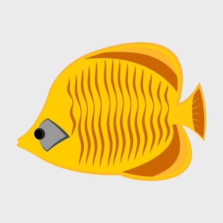 Icon reef fish.